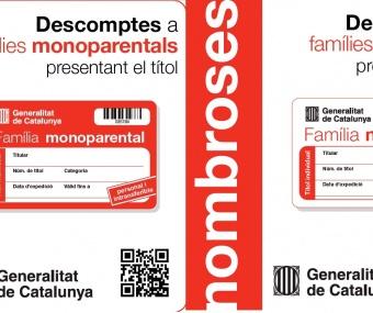 DESCOMPTES DISCAPACITATS, FAMILIES NOMBROSES I MONOPARENTALS